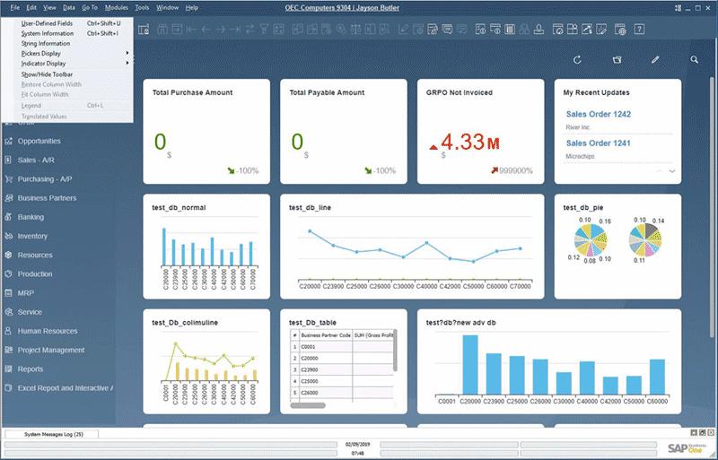 SAP Business One v10 screen